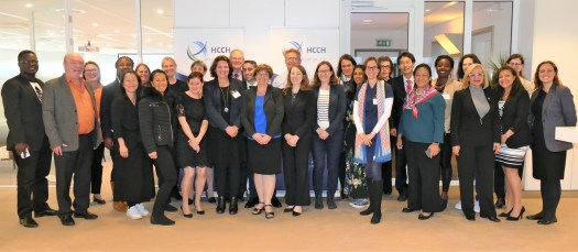 2019 HCCH Illicit Practice Working Group.JPG