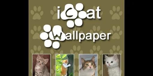 iCat Wallpaper
