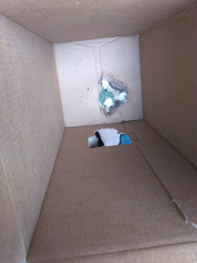Bird shit in bota box