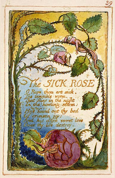 A Short Analysis Of William Blakes The Sick Rose