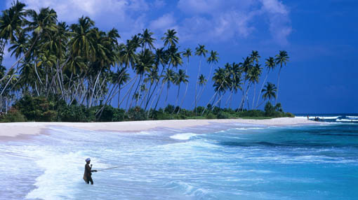 Sri Lanka beaches facts