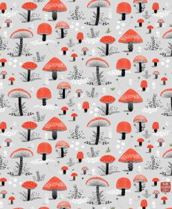 1-mirdinara_mushroom_pattern