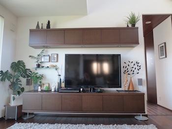 観葉植物をたくさん飾ったおしゃれなテレビ周りの画像