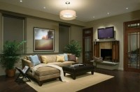 Living Room Lighting Options - Interior design