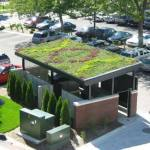 22-ideas-techos-verdes-13