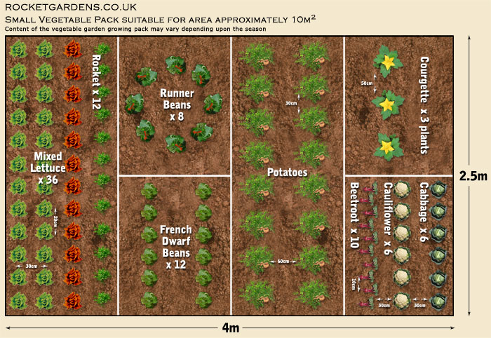 Blueprint Of Garden Of Home Plans Ideas Picture