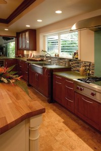 20 Beautiful Tropical Kitchen Design Ideas | Interior God