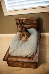 dog beds for small dogs - 28 images - petmate nap of ...
