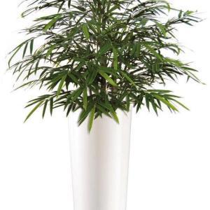 Bamboo Japanese Bush - Plante artificiale, plante interior, plante lux