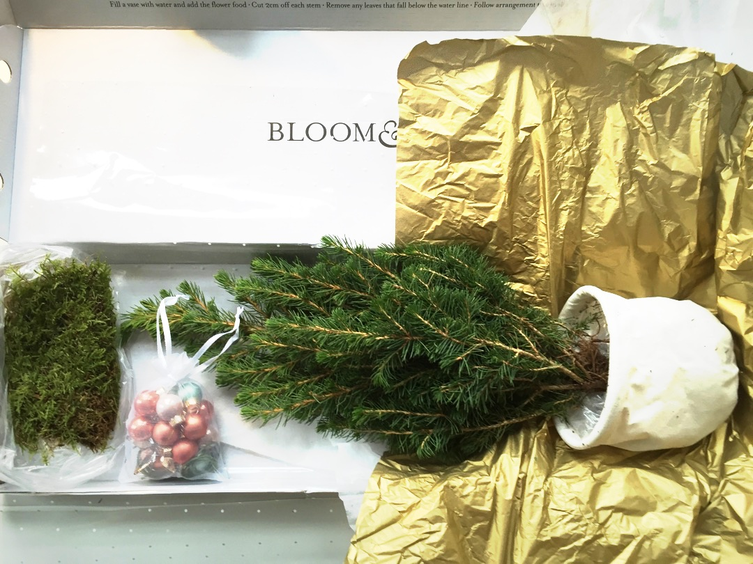 bloom and wild christmas tree in a box - Christmas Tree In A Box