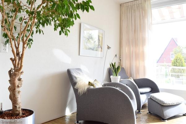 grijze stoelen met grote plant