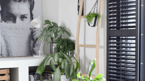 groen in huis