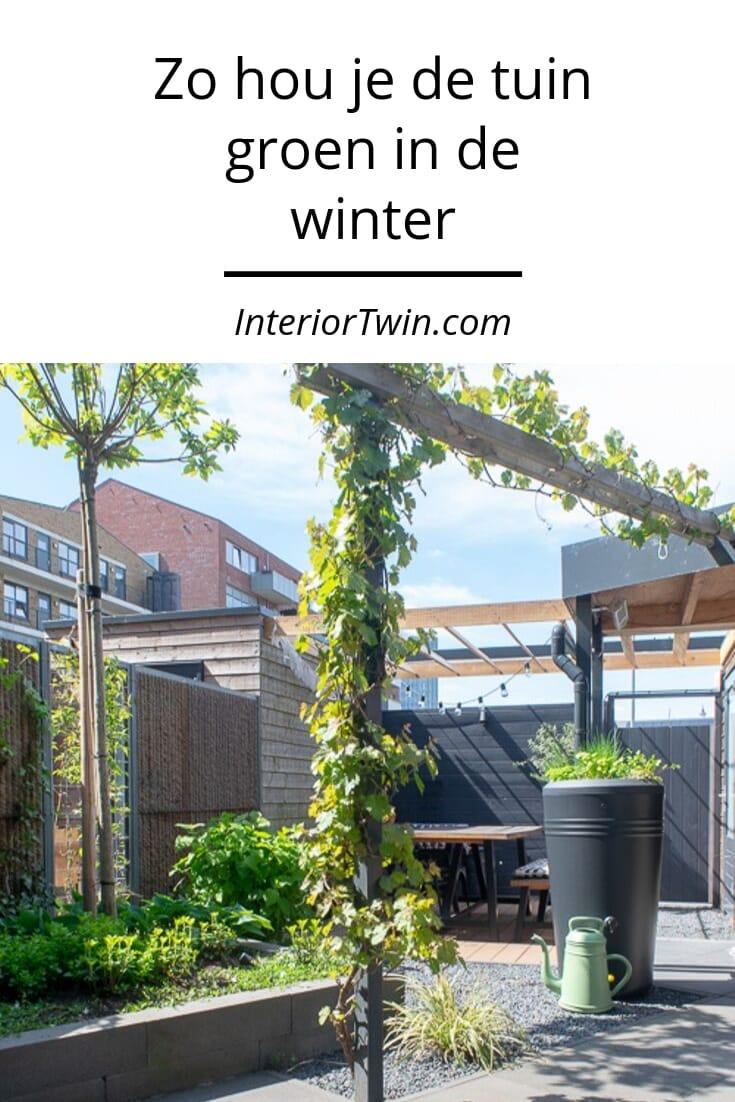 zo hou je de tuin groen in de winter