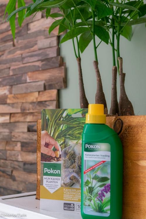 pokon plantenvoeding