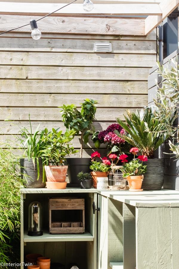 planten op buitenkeuken