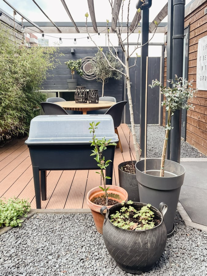 verschillende plantenpotten tuin