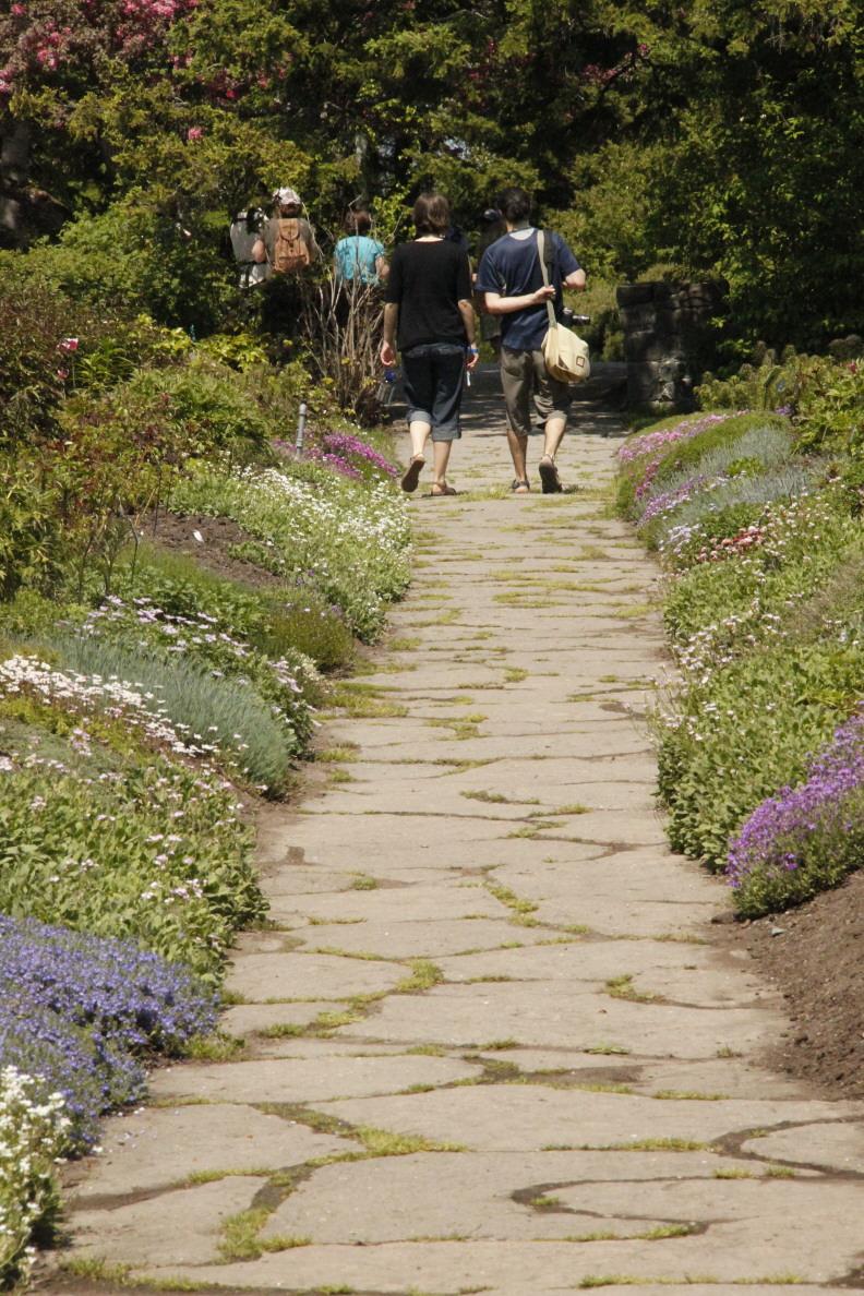 Innovative And Unique Garden Pathway Ideas  Interior Vogue