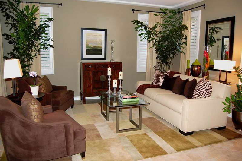 Living Rooms Decoration With Plants