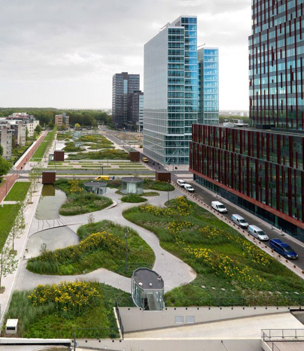 green oasis in highly urban environment