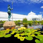 Image Courtesy  Paul g. Wiegman_Phipps Conservatory
