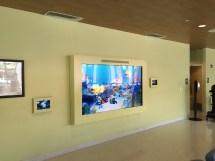 Intermedia Touch Implemented Interactive Aquarium