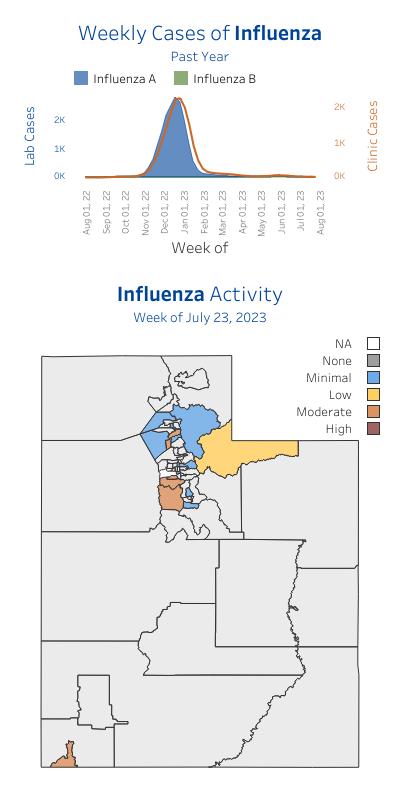 Influenza - Seasonal Flu | Intermountain Healthcare