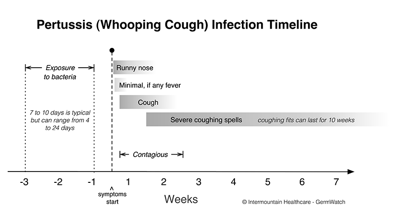 Infection period also bordetella pertussis intermountain healthcare rh intermountainhealthcare