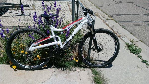 Diamondback Recoil 29er Mountain Bike With Upgrades Trade