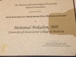 M. Mokadem award