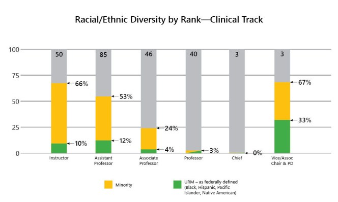 4-Racial Ethnic Diversity by Rank-All Faculty-Clinical Track