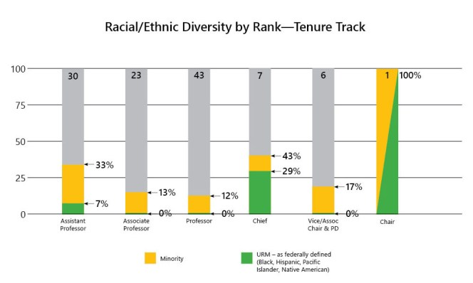 5-Racial Ethnic Diversity by Rank-All Faculty-Tenure Track