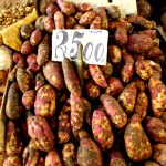 Port Louis Bazaar