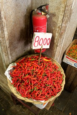 Hot chilies and a fire extinguisher, ironic don't you think?