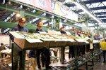 347 extranjeros pasan examen para trabajar en la industria de servicios alimenticios