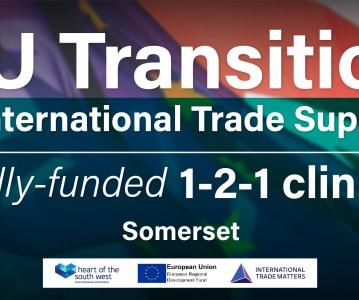 EU Transition Clinics: Somerset