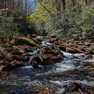 Slate Rock Creek Meets Bradley Creek