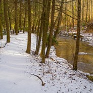 Snowy Trail Along Cove Creek