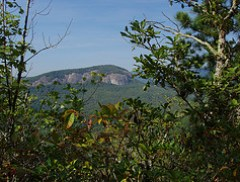 Looking Glass Rock from Bennett Gap Trail