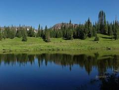 Pond Along North Derby Trail