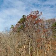 November Sky at Wilderness Cove
