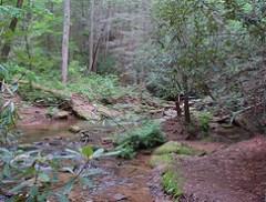 Pulliam Creek Crossing