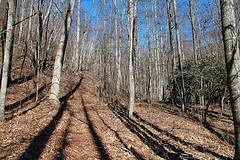 Thompson Creek Trail
