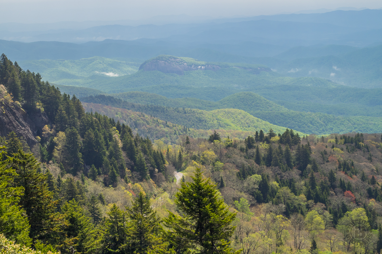 Meanderthals black balsam knob and tennent mountain for Balsam mountain