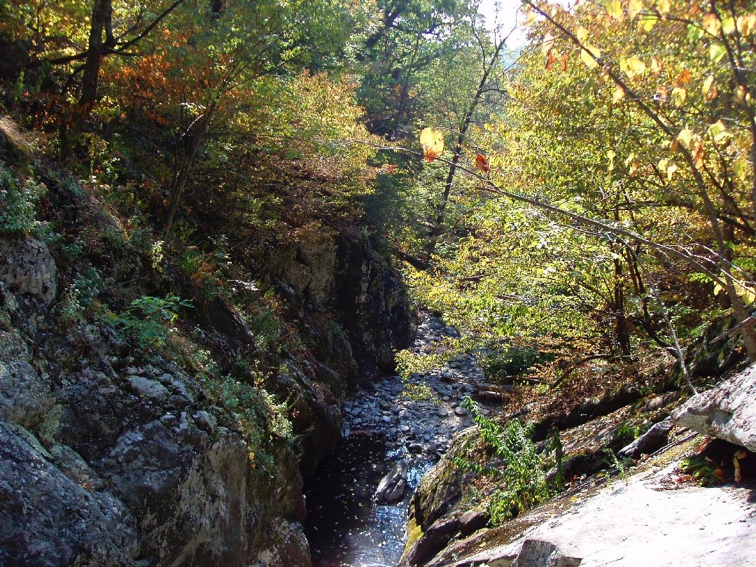 Meanderthals Cedar Run And Whiteoak Canyon Trails