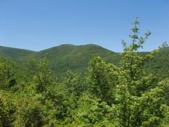Tennent Mountain