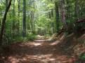 Canebrake Trail