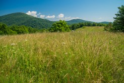 Little Pisgah Mountain