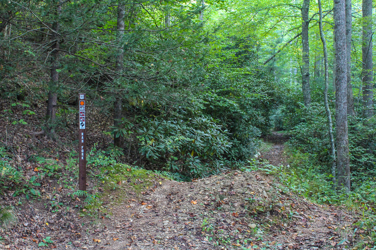 Meanderthals bad fork trail north mills river pisgah national forest solutioingenieria Choice Image