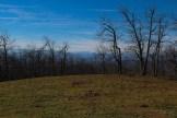Westward from Bearwallow Mountain