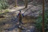 Hopping Cedar Rock Creek